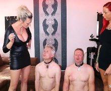 Anni Angel – Sklavenschweine total erniedrigt